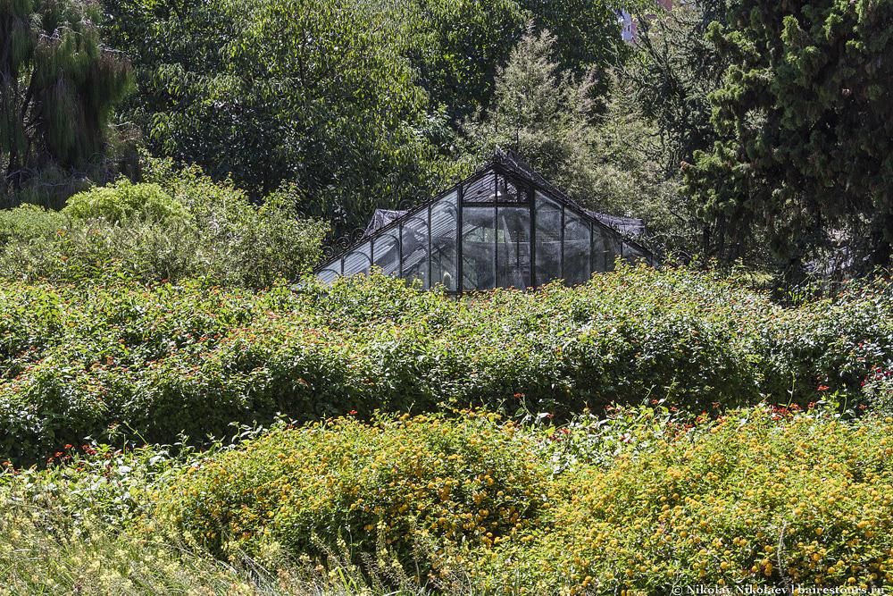 20. На фото почти не видно, но эта зона отведена для райской жизни бабочек.