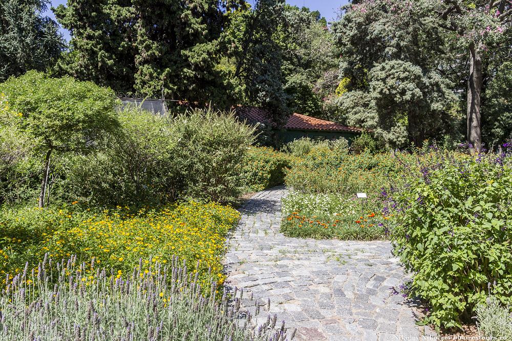 23. Ботанический сад Буэнос-Айреса.