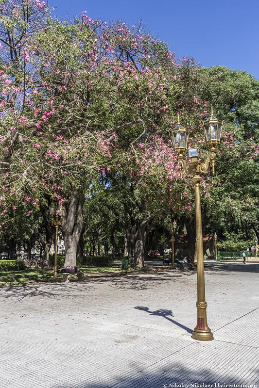 2. Большую часть площади занимает великолепный парк с огромными деревьями, который нередко украшается еще и цветами этих самых деревьев. Шикарное место.