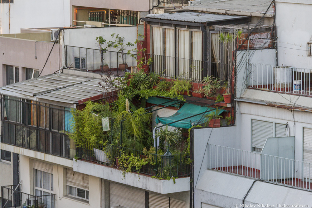34. Кто-то устроил настоящий тропический лес на балконе.