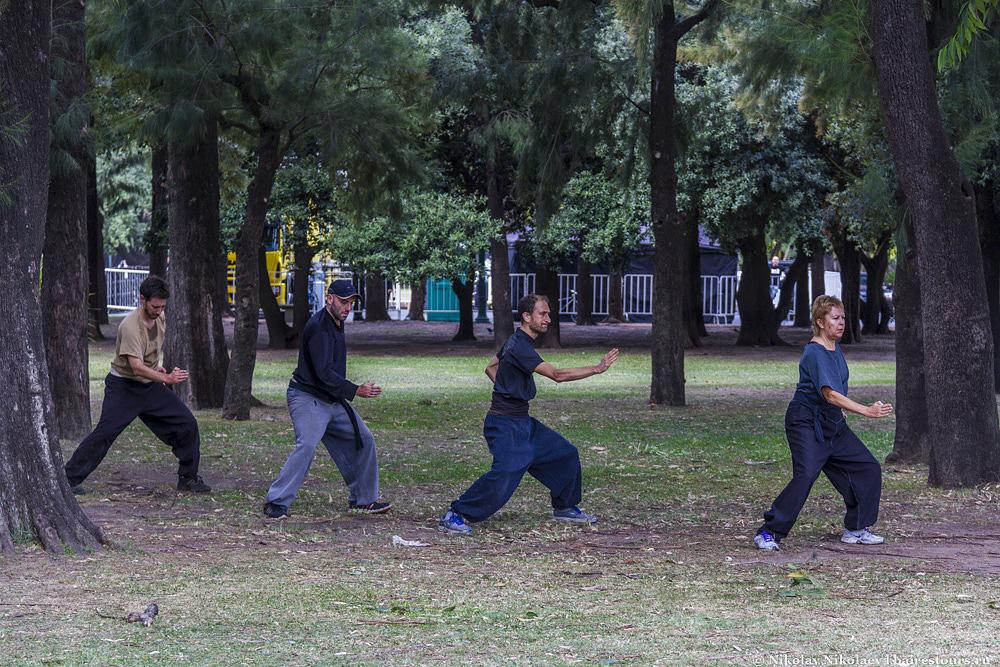 15. Недалеко от японского сада иногда можно встретить и такие вот картины, будущие японские самураи из Аргентины.