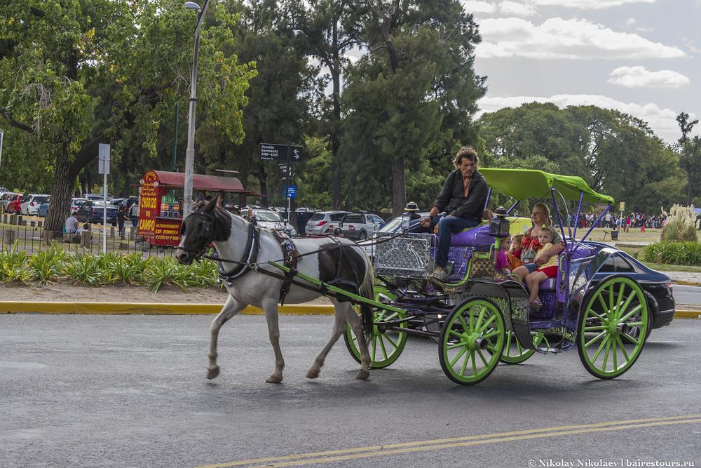21. Можно прокатиться на повозке по проспектам Буэнос-Айреса. Впрочем, увидеть лошадь на улицах города не такая уж и редкость, для некоторых людей это все еще вполне обычный вид транспорта.