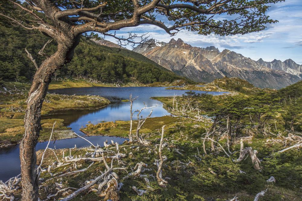 06. Национальный парк Огненная Земля (Tierra del Fuego). Фото Petr Meissner.