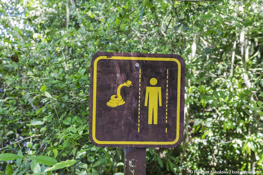 35. Это настоящий рай. Помимо прекрасных водопадов здесь удивительная флора и фауна. О последней свидетельствуют различного рода предупреждения.
