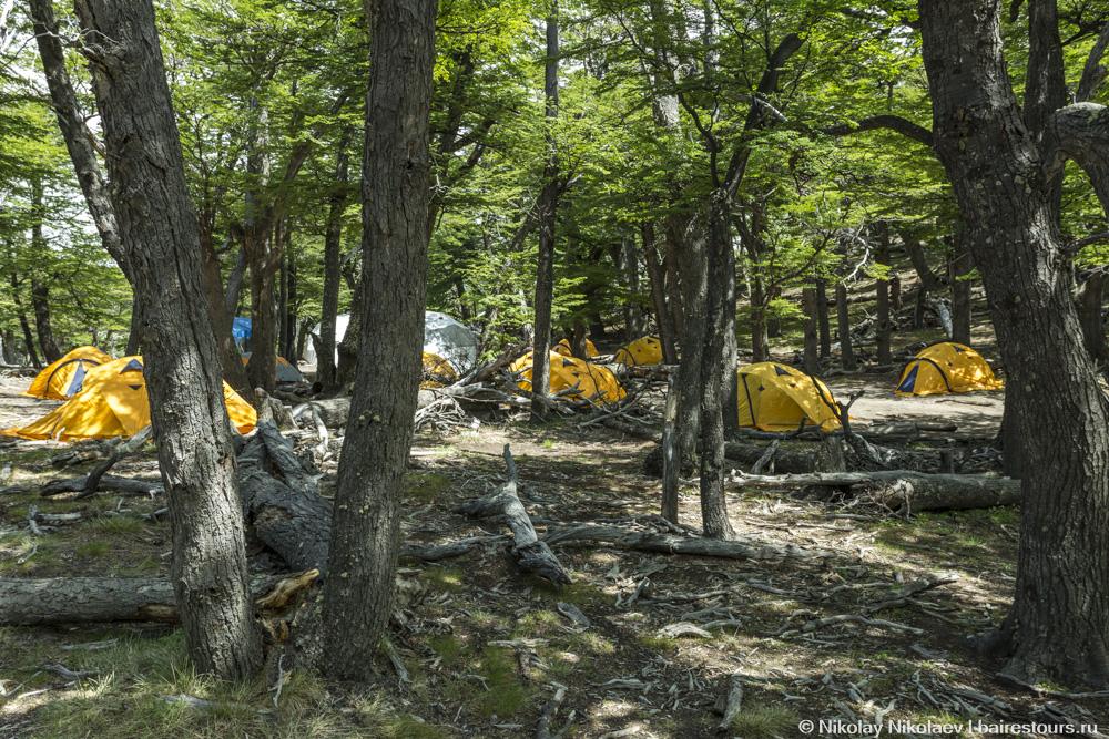 06. На территории парка есть несколько кэмпингов, где можно арендовать палатку.