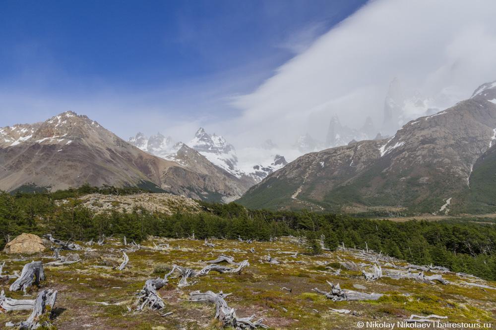 10. На заднем плане справа на фото еле виднеется гора Фитц Рой. Одним из серьезных минусов трекинга здесь является очень сильная облачность. Громадные стена Фитц Роя, ради которого многие сюда и приезжают, как магнит, притягивают к себе облака, так что большую часть времени горы попросту не видно, даже когда стоишь у ее подножия.