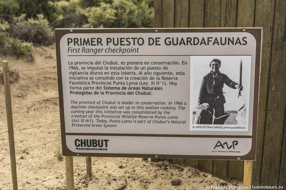 54. В Аргентине довольно серьезно занимаются охраной природы, первый рейнджер появился на полуострове еще в 1966 году.