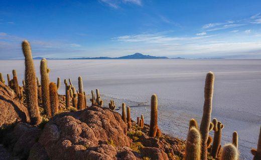 Остров Инкауаси на озере Уюни