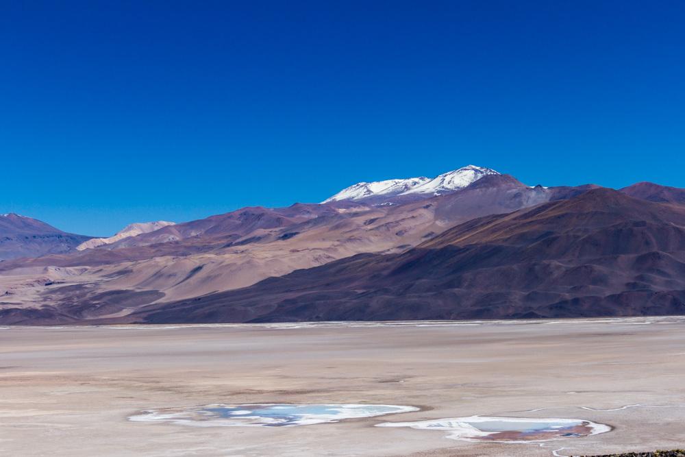 Экспедиция по аргентинской Пуне. Голубые лагуны.